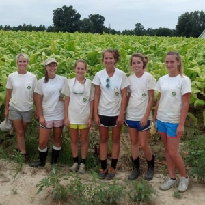 seasonal workforce group photo in tobacco field - Carolina Precision